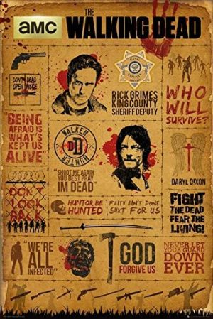 The Walking Dead Infographic Poster